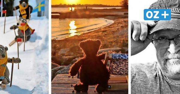 Ein Mann wie ein Bär: Werftarbeiter aus Stralsund macht Plüschtiere zu Internet-Stars
