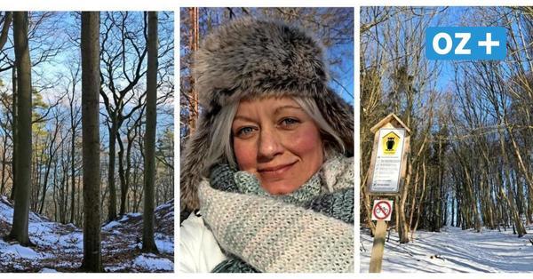 Winterwanderung auf Rügen: Am Selliner Ufer entlang zum Schwarzen See