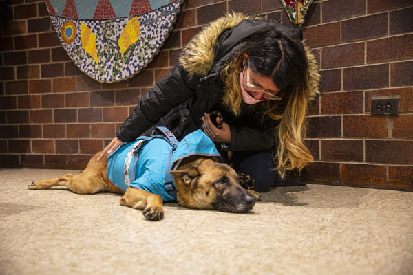 Nelly Roa kneels next to her dog, Toby, at the 14th District police station. | Anthony Vazquez/Sun-Times