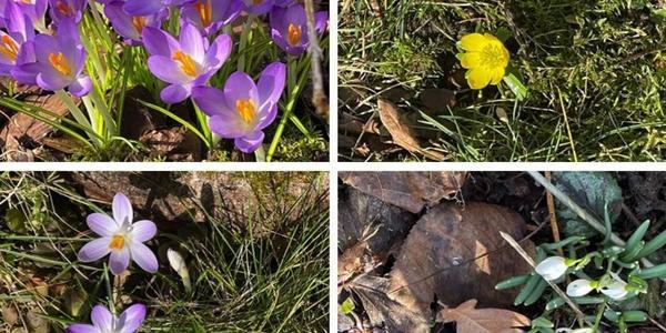 Wie erleben Sie das traumhafte Frühlingswochenende im Landkreis Göttingen?