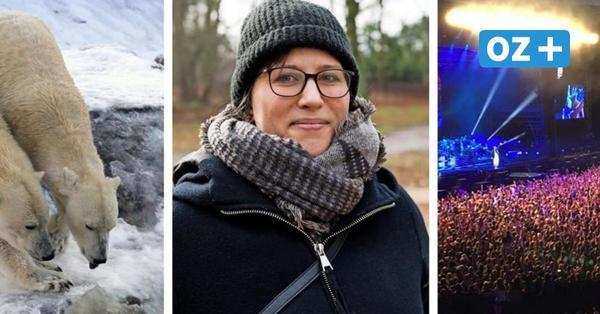 Stadion, Zoo und Barnstorfer Wald: Was das Leben im Rostocker Hansaviertel ausmacht