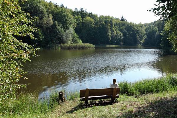 Der Baa-See lädt zum Verweilen ein. Foto: bad-freienwalde.de