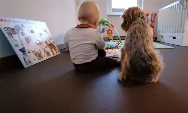 Stephan Bodens Sohn Ivan und Hund Günther spielen gemeinsam. (Foto: privat)