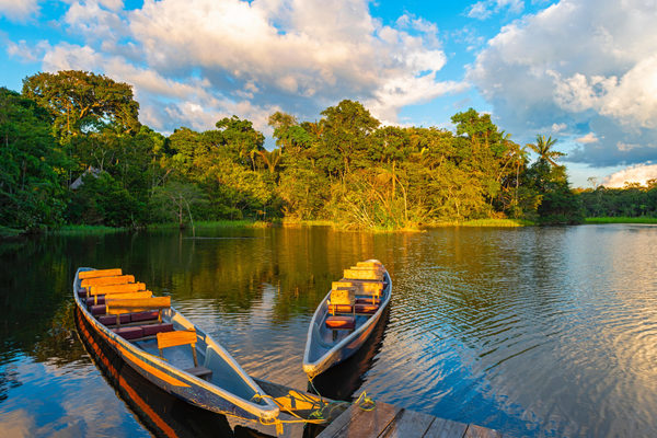 Regional: debt-for-nature swaps, a tool to protect Latin America's biodiversity
