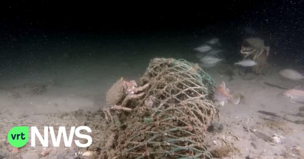 Les épaves de la mer du Nord seront mieux protégées - Wrakken Noordzee krijgen betere bescherming