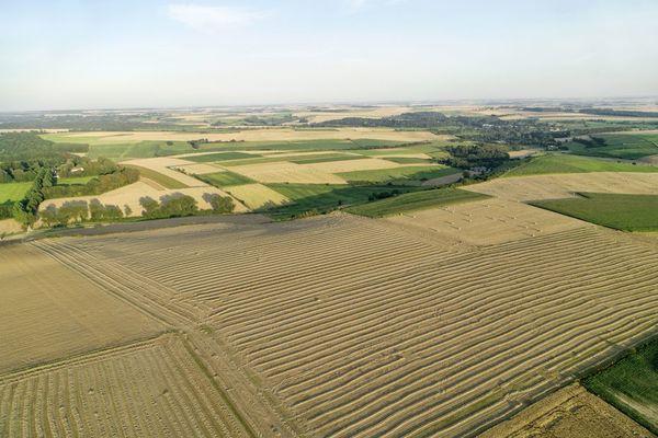 Les agriculteurs du Nord craignent une baisse de leur rémunération - Noord-Franse Landbouwers vrezen voor lagere inkomsten