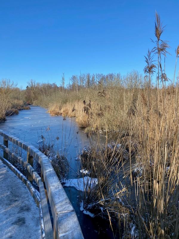 Vorsicht: Im Winter kann es auf den Holzstegen richtig glatt werden. Foto: Maike Schultz