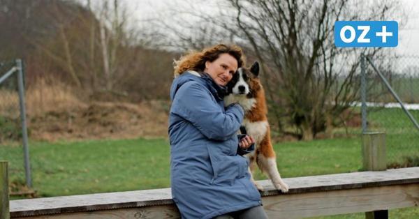 Doberaner Hundetrainerin: Das sollte beim Welpenkauf während Corona beachtet werden