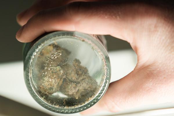 A jar of marijuana flower at NuEra Cannabis. | Pat Nabong/Sun-Times