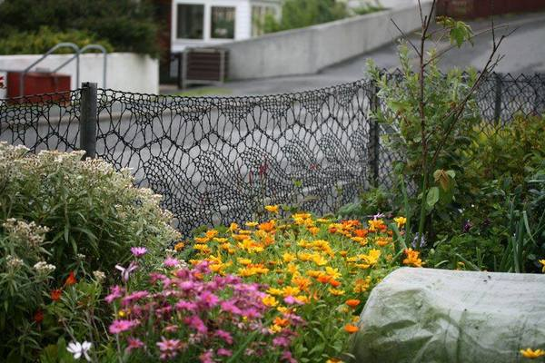 A resident of Hamnavoe, Shetland, Anne Eunson, knitted herself a fence using twine (the same kind used in fishing nets)