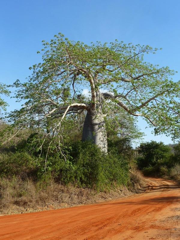 Parque Nacional do Quicama, Angola