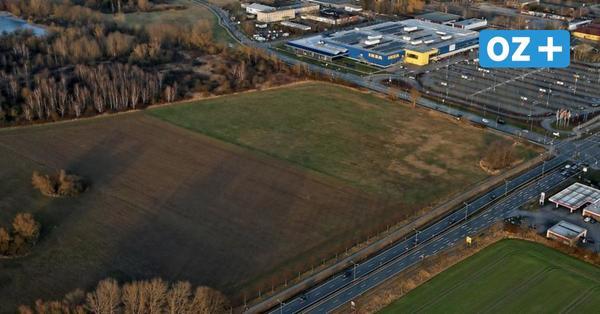 Rodungen in Schutow: Wann Decathlon und Höffner in Rostock bauen