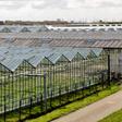 Glastuinbouw richting klimaatneutraliteit