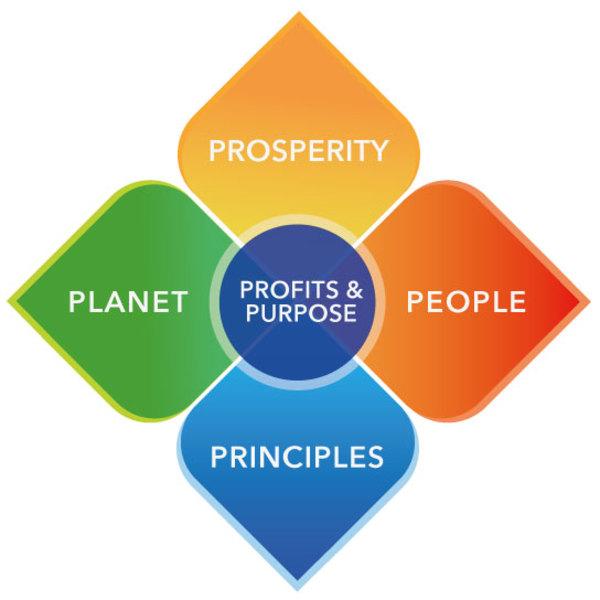 Diagram 1: The 6P Good Growth Model