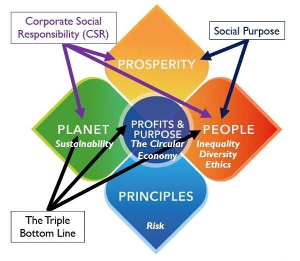 Diagram 3: Understanding the Key Terms