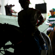 Horse Racing Bets Its Future on Technology