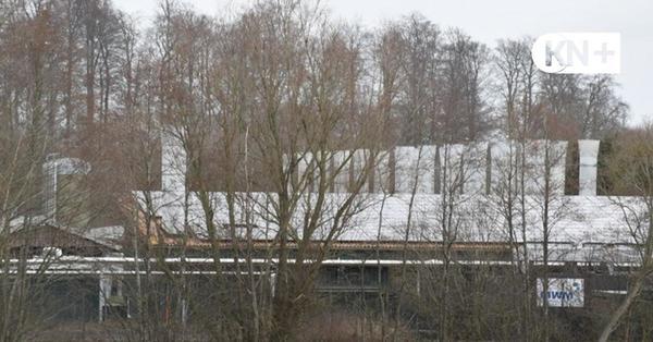 Geflügelpest in einem Betrieb in Dannau: Wieder müssen  53.000 Hennen werden getötet