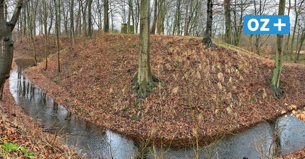 Ausflug mit Abenteuer: Was verbirgt sich hinter der Burganlage Barnekow?