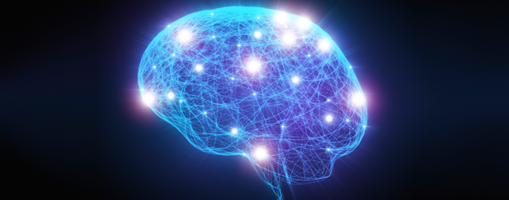 Vejen til hjernen går gennem maven