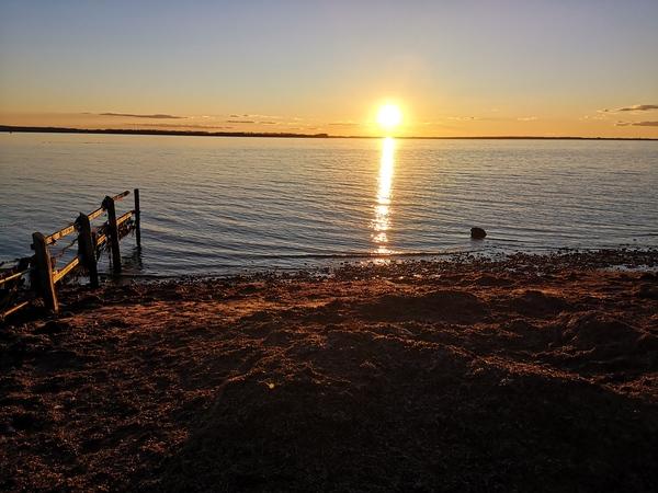 Sonnenuntergang auf der Insel Poel  (Foto: Steffen Buck)