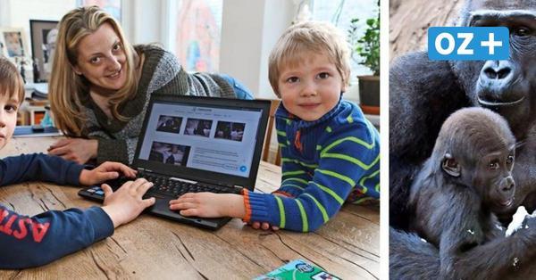 Rätselspaß im Affenhaus: Wie der Rostocker Zoo zum digitalen Escape-Room wird