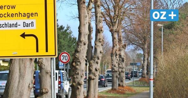 Altheide: Darum fordern Einwohner Tempo 50 auf Ortsdurchfahrt der B 105