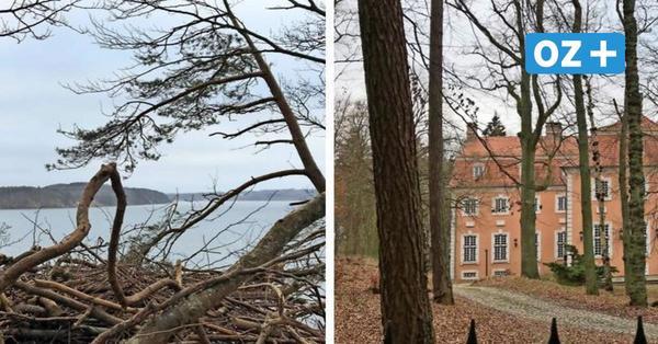 Wanderer sauer: Gutshaus-Besitzer sperrt weiterhin Küstenweg auf Rügen – trotz Gerichtsurteil
