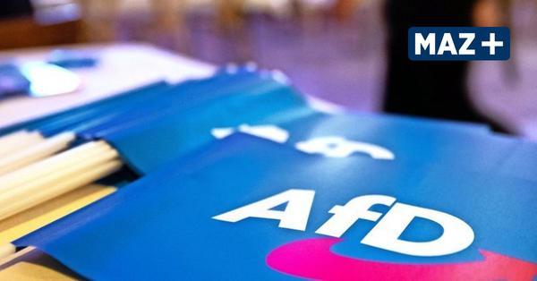 AfD-Eilantrag abgelehnt – Mitgliederversammlung in Brandenburg mit maximal 500 Teilnehmern