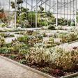 Berggarten: Kosten für neues Schauhaus fast verdreifacht – 2024 steigen die Eintrittspreise