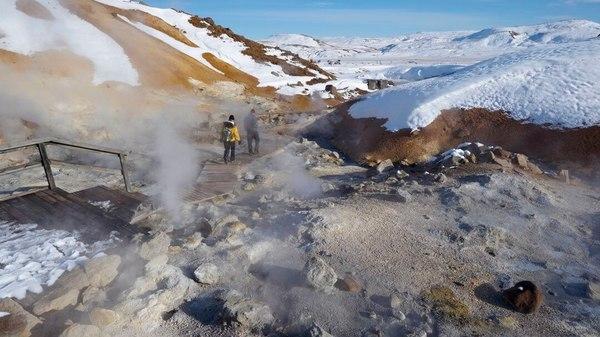 Nach Erdbebenserie: Vulkan auf Island ausgebrochen