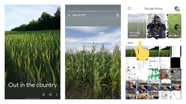 """Google Photos highlights """"out in the country"""" as a themed memory"""