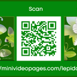 Lepidoptera – Mini Video Pages