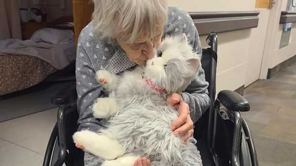 How to fight isolation in locked-down nursing homes? Friendly, furry robots.
