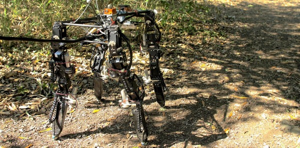 Shape-shifting robots in the wild: the DyRET robot can rearrange its body to walk in new environments