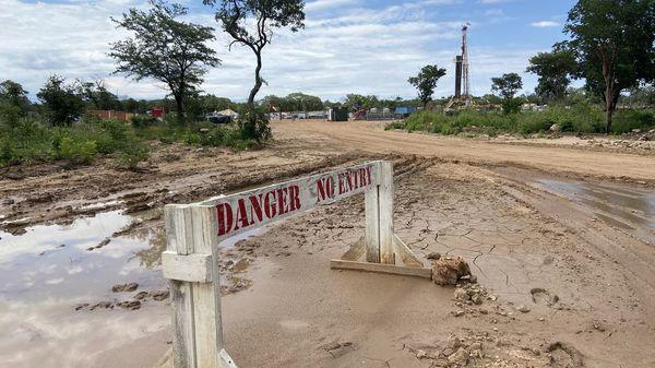 Ölsuche in Naturpark in Namibia: Tierschützer sind empört und sorgen sich um Elefanten