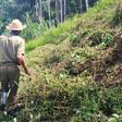 Productores agropecuarios y campesinos logran que gobierno cubano ajuste tarifas de agua y luz