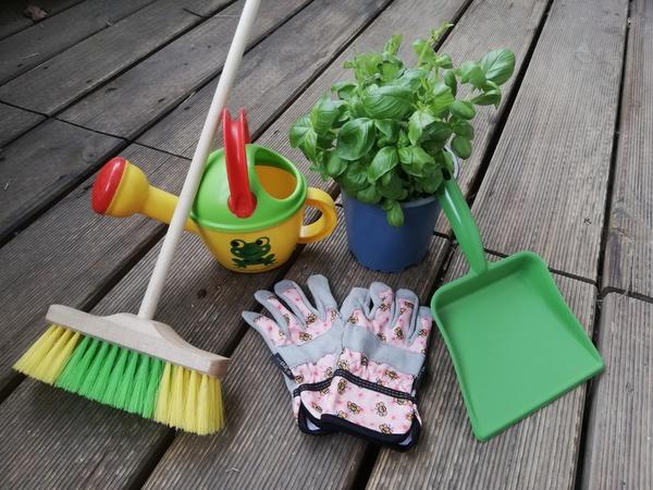 Das Pflanzen kann beginnen. Foto: Patricia Liebling