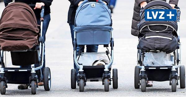 OVG kippt Verbot: Babymärkte dürfen in Sachsen wieder öffnen
