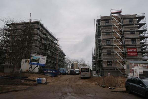 Die Haus- und Grundstücksgesellschaft Werder (HGW) baut gerade 36 neue Wohnungen auf der Jugendhöhe. Foto: Luise Fröhlich