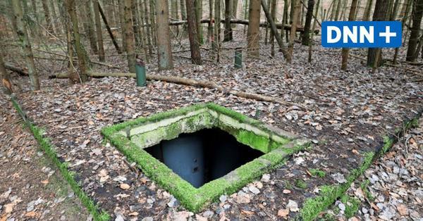 Wald mit Ex-SED-Führungsbunker in Neubrandenburg wird in Berlin versteigert