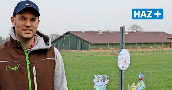 Vogelgrippe: Auch die Freilandhühner befinden sich im Lockdown