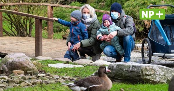 Ferien vor der Haustür: Was in Niedersachsen freizeittechnisch möglich ist