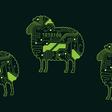 Sheep Behaviour Prediction using Machine Learning | Wed 31st Mar 5.30pm | Orbica 128 Lichfield St, Christchurch