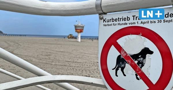 Travemünde: Ab 1. April gilt für Hunde Strandverbot