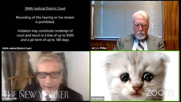 That Zoom Call with the Lawyer-Cat, Explained
