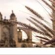 17 comunidades, 17 ideas de viaje para Semana Santa
