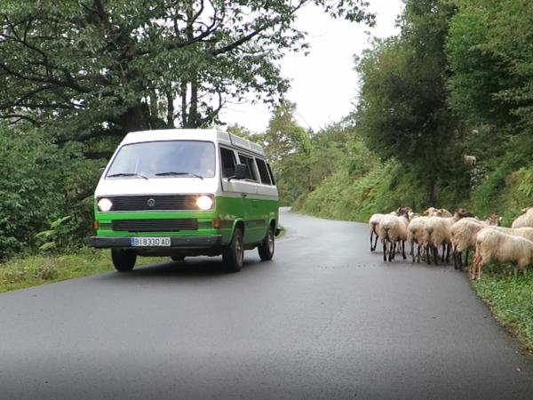 El Pirineo en autocaravana y furgoneta camper