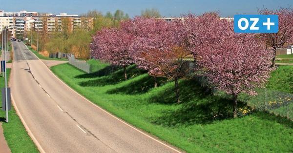 Sonniges Frühlingswetter in MV: Hier sollten Sie die ersten warmen Tage verbringen