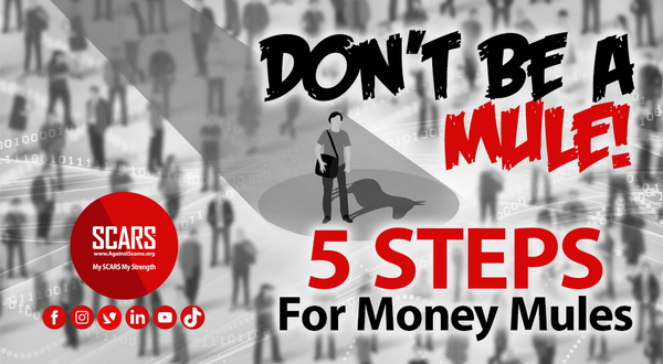 5 Steps Guide For Money Mules