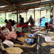 University of Oslo Human Rights Award 2020: Using coffee to secure women´s rights